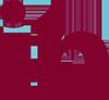 icone-linkedin Ble Macaw
